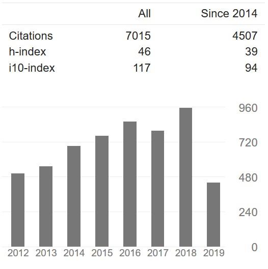 Citations at Google Scholar